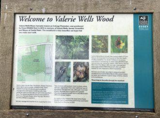 Welcome to Valerie Wells Wood   Graham Cook