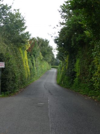 The long driveway to the Martha Frew Home