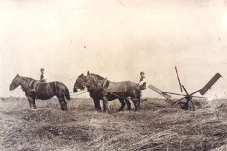 The Farmland Museum, Denny Abbey Community Archive