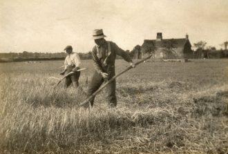 Robert Roberts and Tom Mayhew mowing barley on the field by Blackheath Farm looking toward Bramfield.