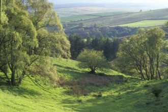 The Tarset Valley, from above the ruin of Blackheughhead farmstead